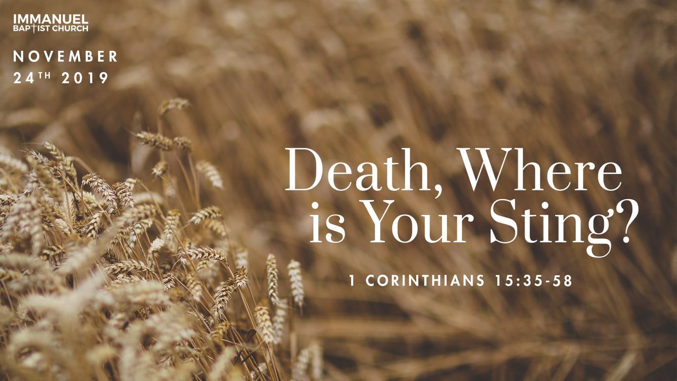Death, Where Is Your Sting? (1 Corinthians 15:35-58)