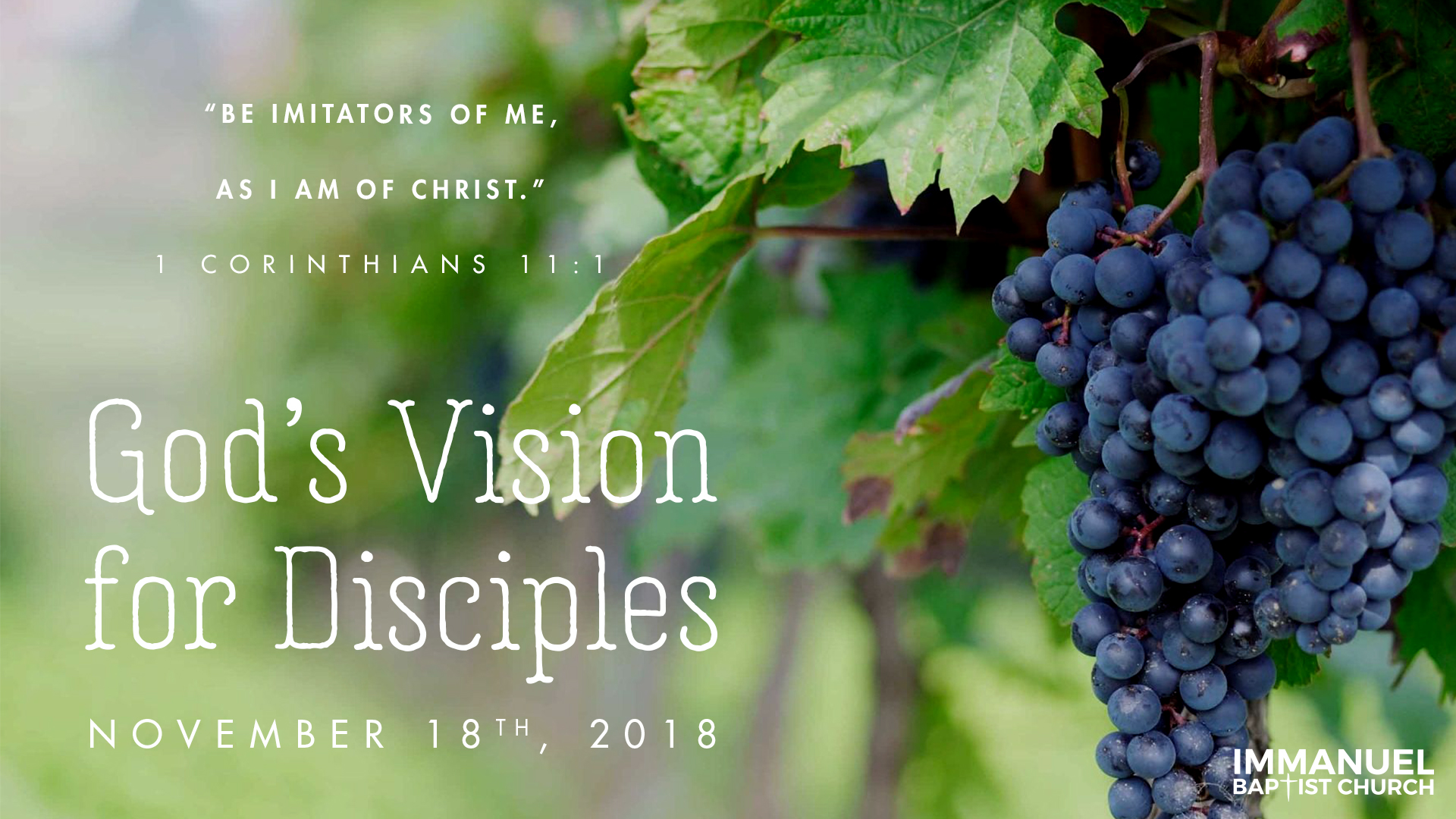What Are Disciples? Image
