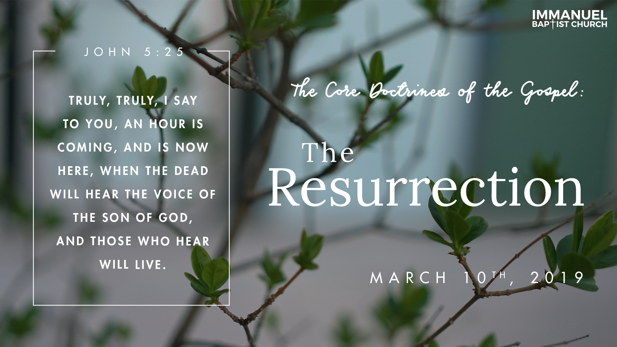 The Core Doctrines of the Gospel (Part 5): The Resurrection Image