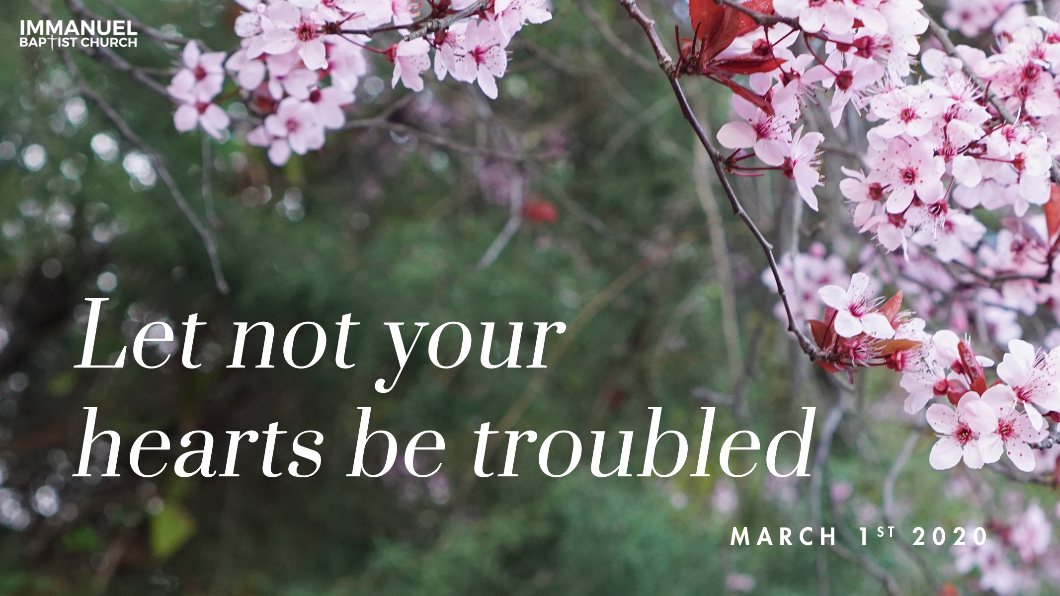 Let Not Your Hearts Be Troubled Image