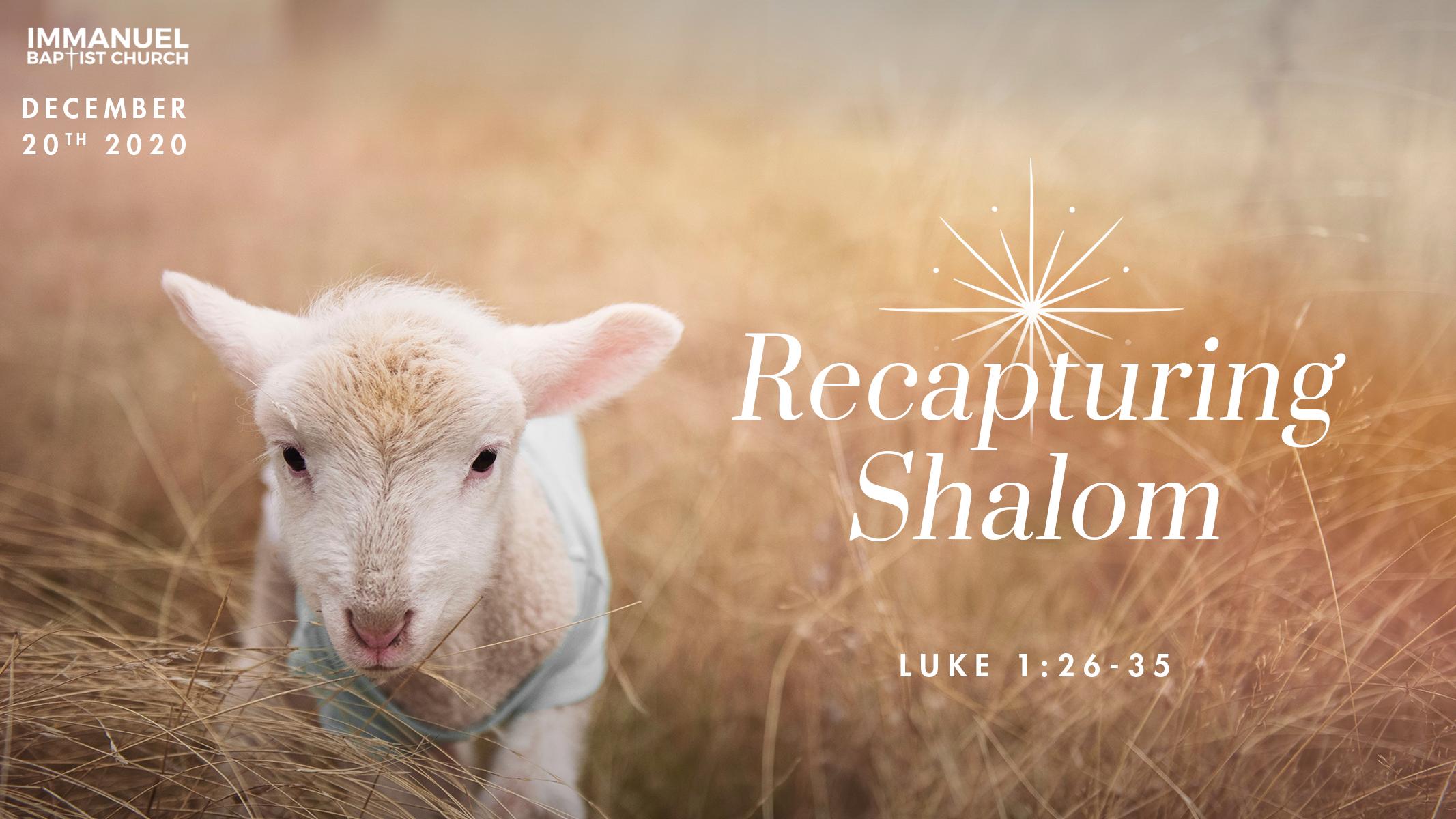 Recapturing Shalom Image