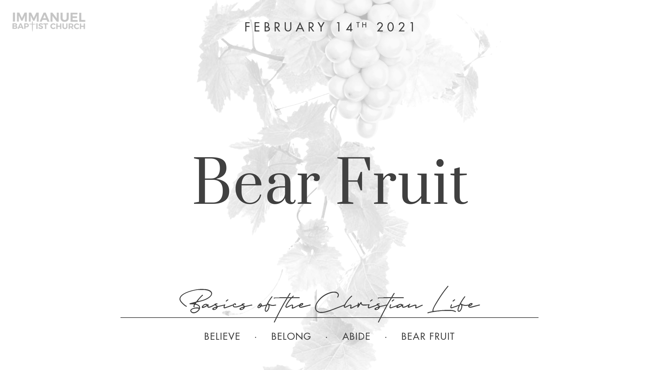 Bear Fruit Image