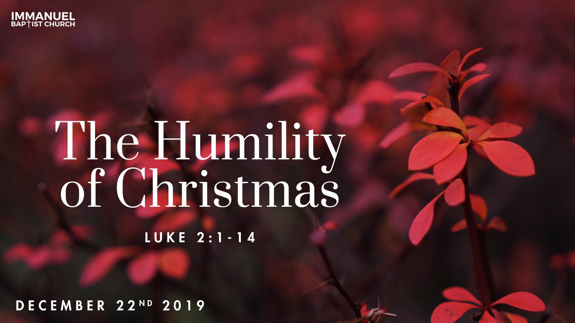 The Humility of Christmas (Luke 2:1-14)