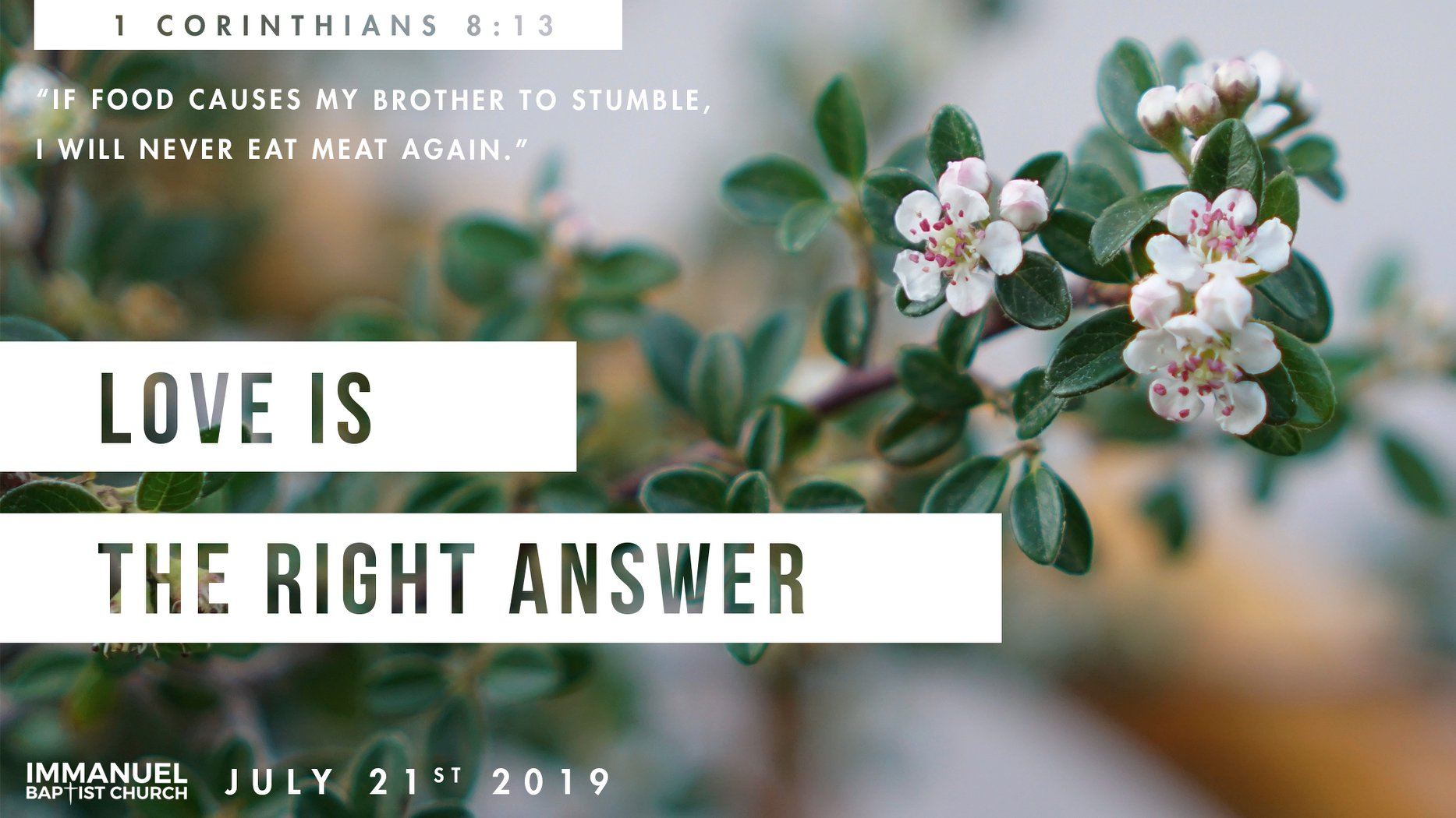 Love is the right answer