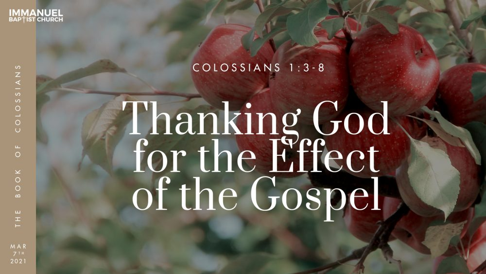 Thanking God for the Effect of the Gospel - Colossians 1:3-8
